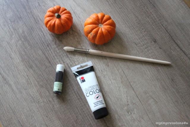 Materialien - weiße Zierkürbisse - Halloween
