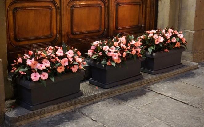 Blumen in Florenz_Nacht_myimpressions4u