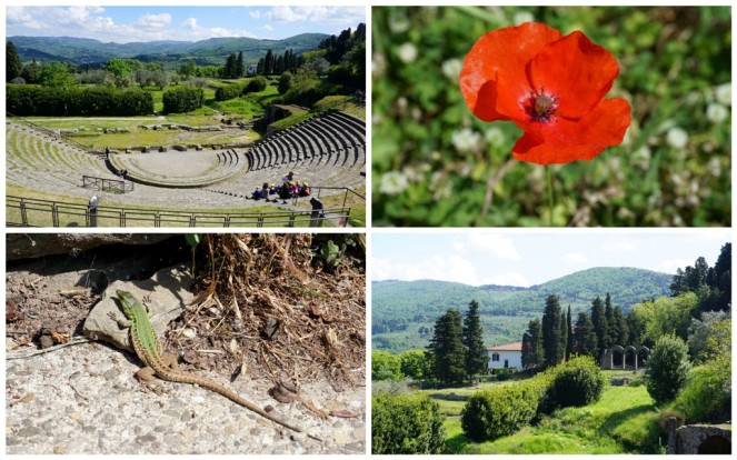 Area archeologica di Fiesole 4_Florenz_myimpressions4u